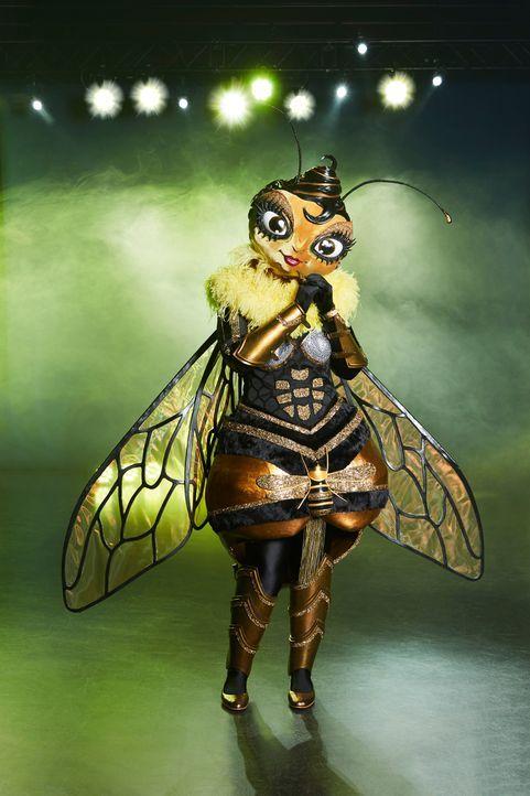 Die Biene - Bildquelle: Marc Rehbeck ProSieben / Marc Rehbeck