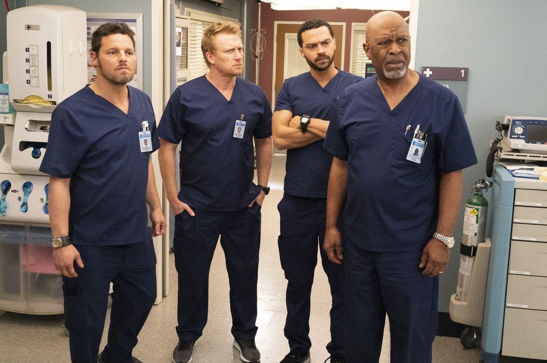 (v.l.n.r.) Dr. Alex Karev (Justin Chambers); Dr. Owen Hunt (Kevin McKidd); Dr. Jackson Avery (Jesse Williams); Dr. Richard Webber (James Pickens Jr.) - Bildquelle: Mitch Haaseth ABC Studios