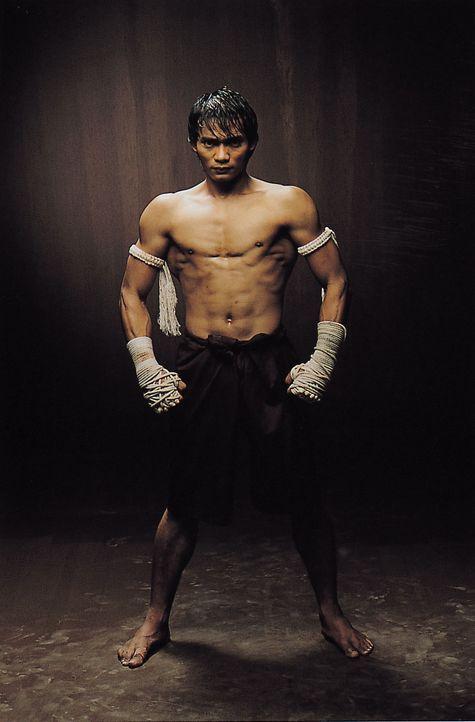 Kämpft für das Gute: Ting (Tony Jaa) ... - Bildquelle: e-m-s new media AG