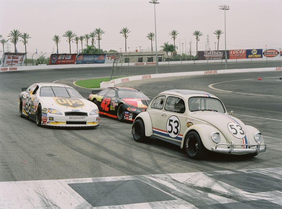 Herbie gibt alles ... - Bildquelle: Walt Disney Pictures