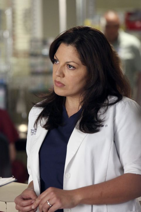 Rückblick: Callie (Sara Ramirez) ahnt noch nicht, was noch auf sie zukommen wird ... - Bildquelle: ABC Studios