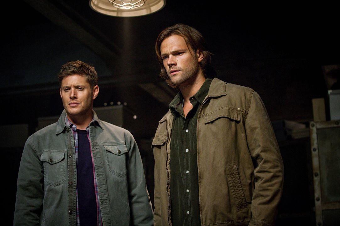 Eigentlich kämpfen Sam (Jared Padalecki, r.) und Dean (Jensen Ackles, l.) gemeinsam gegen die Dämonen, doch sie sind jetzt nicht mehr nur zu zweit .... - Bildquelle: 2013 Warner Brothers