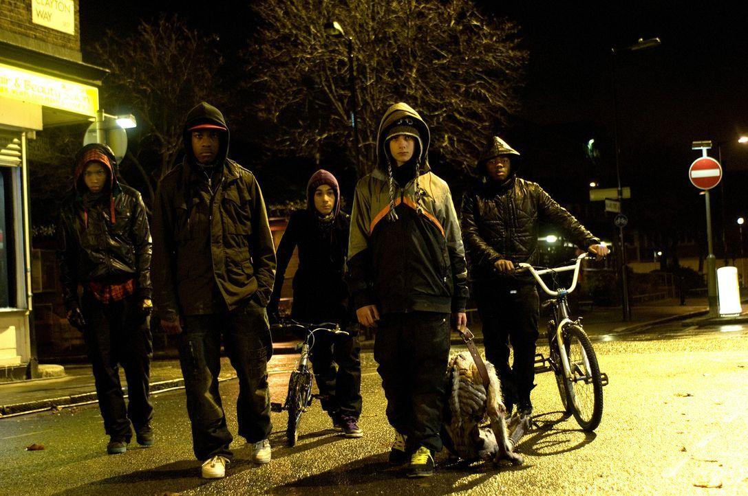 Als Moses (John Boyega, 2.v.l.) und seine Gang, bestehend aus (v.l.n.r.) Dennis (Franz Drameh), Biggz (Simon Howard), Pest (Alex Esmail) und Jerome... - Bildquelle: Wild Bunch Germany 2013