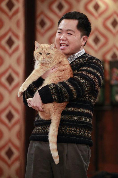 Noch ahnt Han (Matthew Moy) nicht, dass die Katze von Max und Caroline ein Geheimnis hütet ... - Bildquelle: Warner Bros. Television