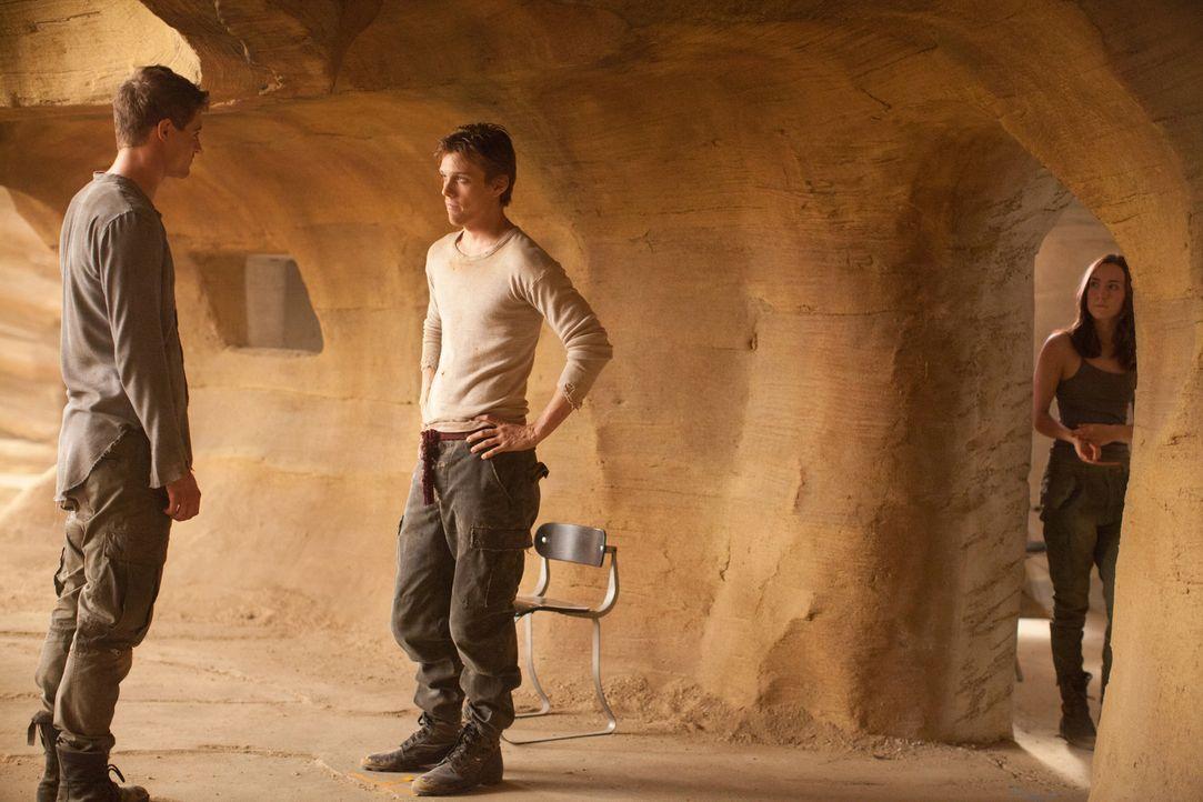 Während (v.l.n.r.) Jared (Max Irons) seine Melanie wiederhaben möchte, hat sich Ian (Jake Abel) in Wanderer (Saoirse Ronan) verliebt. Da macht das a... - Bildquelle: 2013 Concorde Filmverleih GmbH