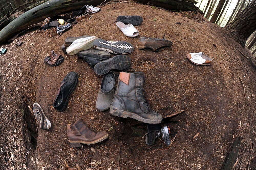 Fuchs klaut Schuhe - Bildquelle: dpa