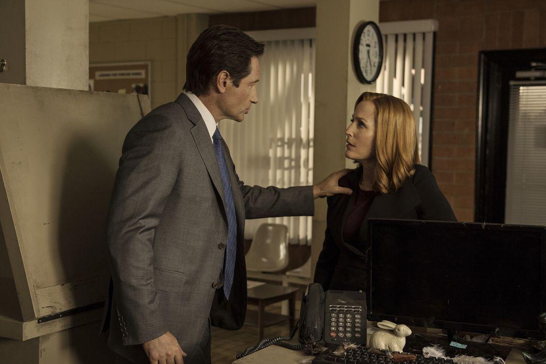 Mulder (David Duchovny, l.) und Scully (Gillian Anderson, r.) werden zu den Ermittlungen in einem Mordfall hinzugezogen, als Zeugen behaupten, ein e... - Bildquelle: 2016 Fox and its related entities.  All rights reserved.