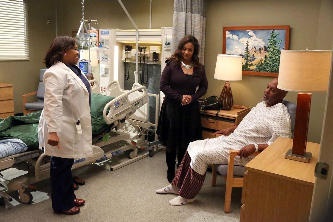 Bailey (Chandra Wilson, l.) ist über den Zustand von Dr. Webber (James Pickens Jr.,r.) beunruhigt. Catherine (Debbie Allen, M.) will ihn schließli... - Bildquelle: ABC Studios