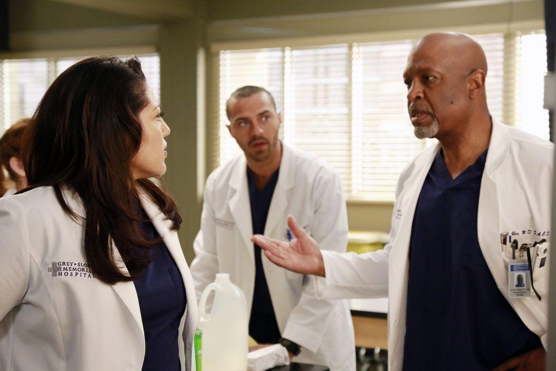 Jackson (Jesse Williams, M.) versucht Callie (Sara Ramirez, l.) klar zu machen, dass auch sie einen schriftlichen Antrag stellen muss, wenn sie ein... - Bildquelle: ABC Studios