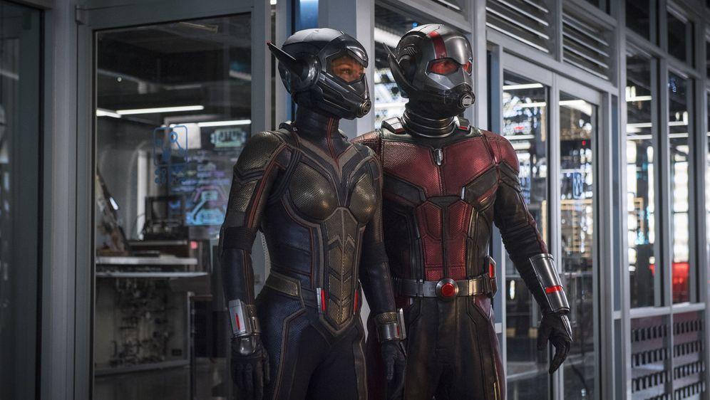 Ant-Man and the Wasp - Bildquelle: 2018 MARVEL