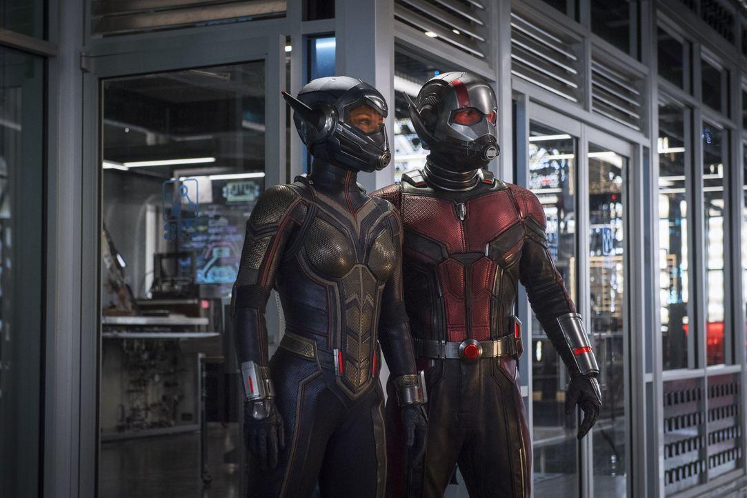 Wasp (Evangeline Lilly, l.); Ant-Man (Paul Rudd, r.) - Bildquelle: 2018 MARVEL
