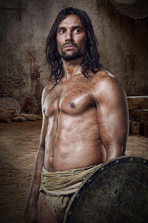 Ein Sklave, der zum Gladiator ausgebildet werden soll: Crixus (Manu Bennett) ... - Bildquelle: 2010 Starz Entertainment, LLC