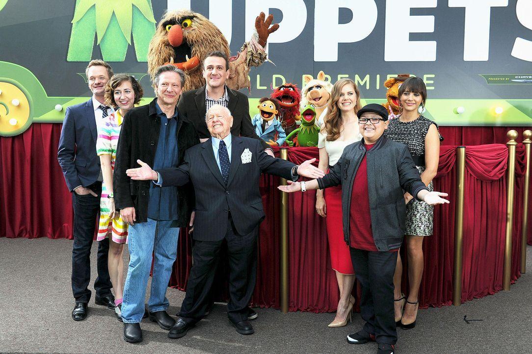 muppets-premiere-la-darsteller-wireimagejpg 1900 x 1265 - Bildquelle: WireImage
