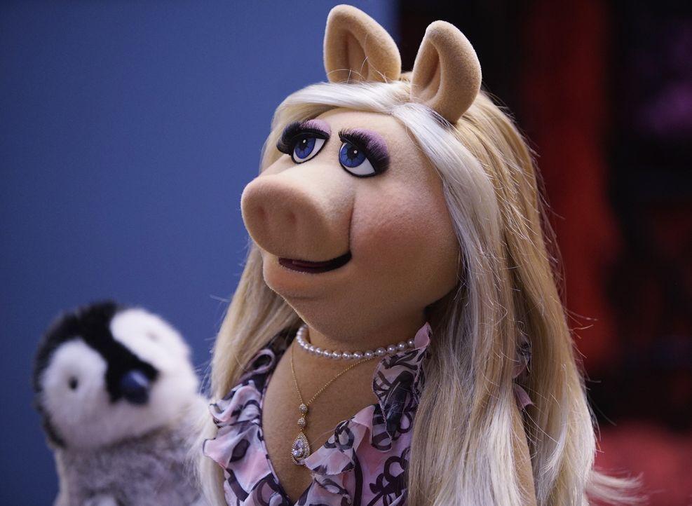 Miss Piggy ist total aufgeregt, weil sie hofft, dass Kermit ihr endlich ihre Liebe gestehen wird ... - Bildquelle: Kelsey McNeal ABC Studios