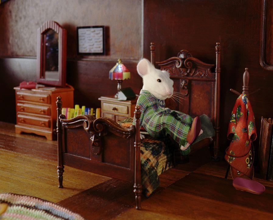 Der kluge Mäuserich Stuart lebt glücklich in seiner Adoptivfamilie Little ... - Bildquelle: 2003 Sony Pictures Television International. All Rights Reserved.