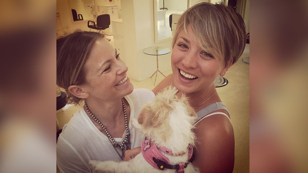 The Big Bang Theory Star Kaley Cuoco Sweeting Mussen Die Hunde