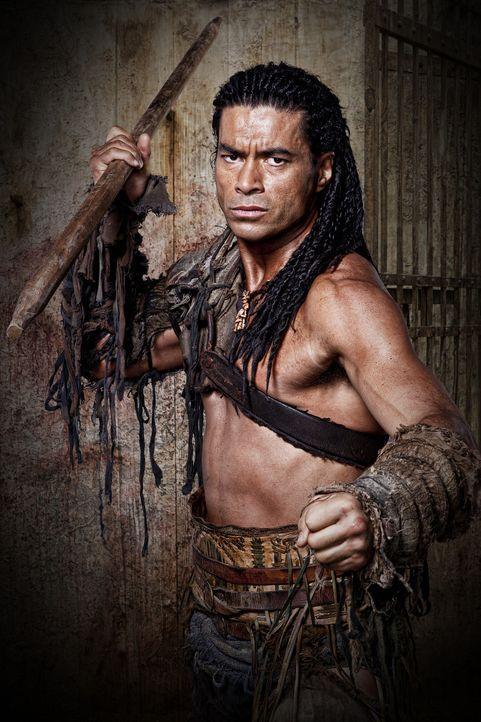 Sklave und Gladiator in Batiatus Ludus: Barca (Antonio Te Maioha) ... - Bildquelle: 2010 Starz Entertainment, LLC