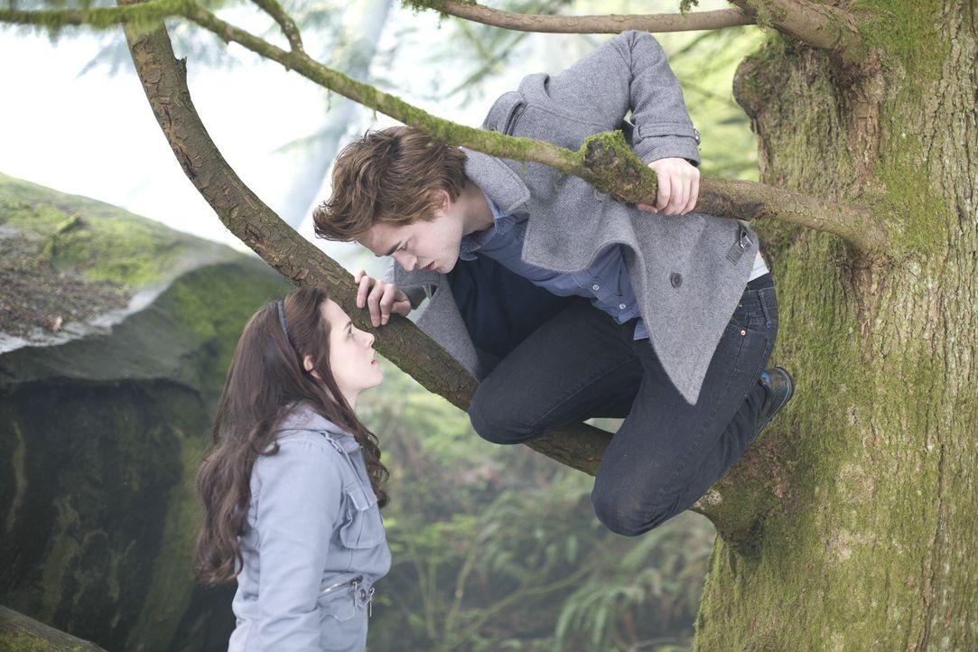 Schon bald führt Edward (Robert Pattinson, r.) Bella (Kristen Stewart, l.) in eine Welt ein, die voller magischer Kräfte und düsterer Geheimnisse... - Bildquelle: 2008 Summit Entertainment, LLC All Rights Reserved