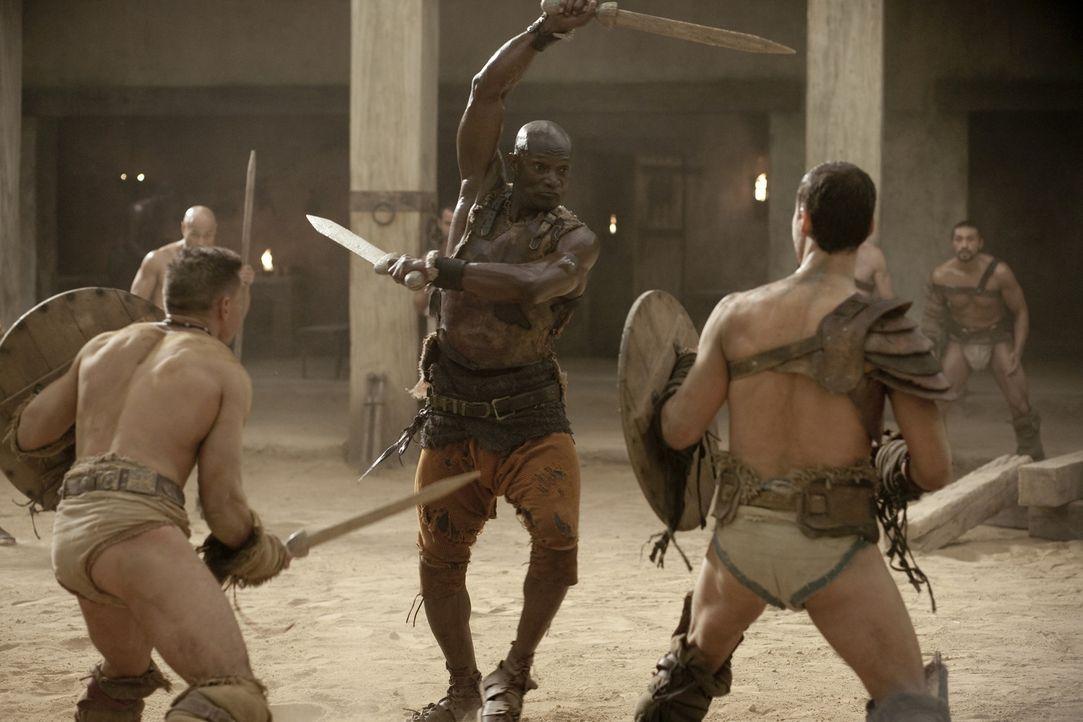 Weil Drago (Peter Mensah, M.) als einziger Gladiator jemals lebend die Arena nach einem Kampf gegen Theokoles verlassen hat, weiß er genau, wie gef... - Bildquelle: 2010 Starz Entertainment, LLC