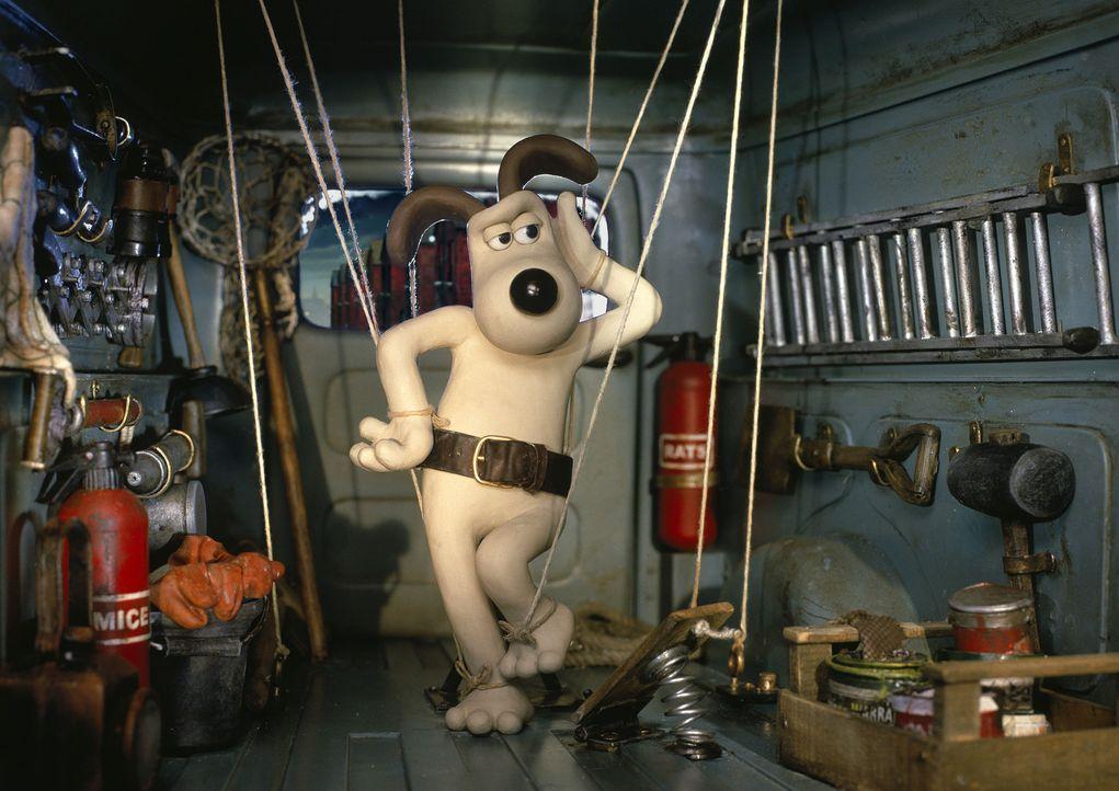 Mit ziemlich gerissenen Methoden will Gromit das Riesenkaninchen zur Strecke bringen. Wird es ihm gelingen? - Bildquelle: Telepool GmbH