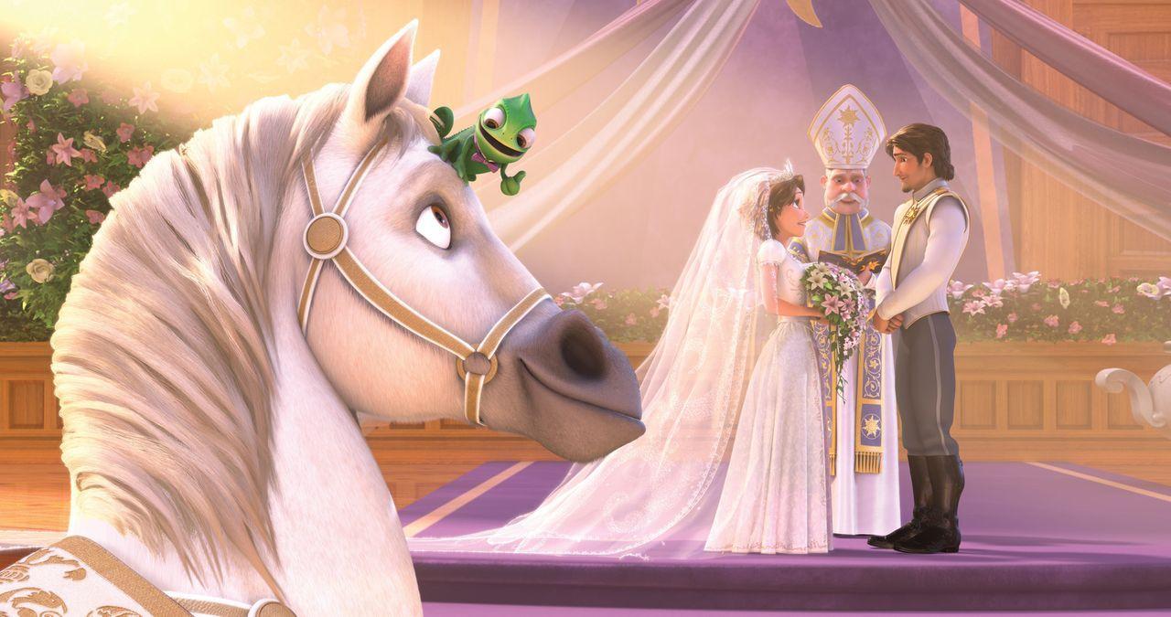 (v.l.n.r.) Maximus und Pascal freuen sich, den wichtigen Part der Ringträger bei Rapunzels und Flynns Hochzeit übernehmen zu dürfen. Noch ... - Bildquelle: Disney.  All rights reserved