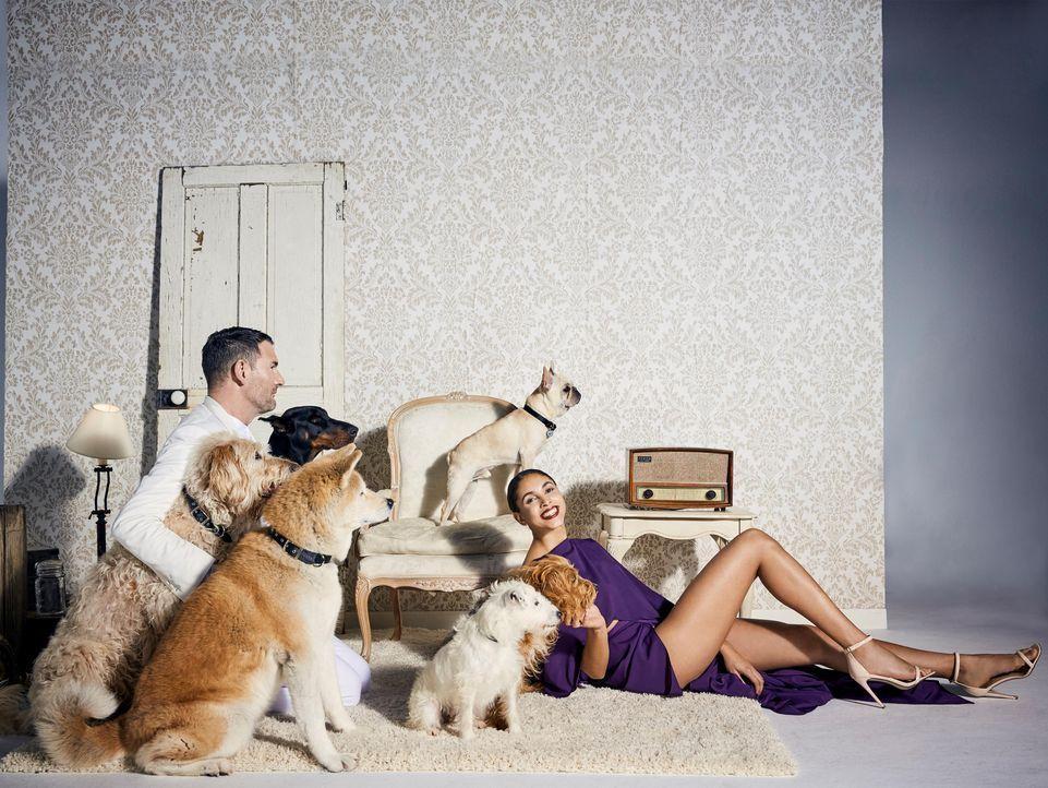 JuliaSt-Dogs - Bildquelle: ProSieben