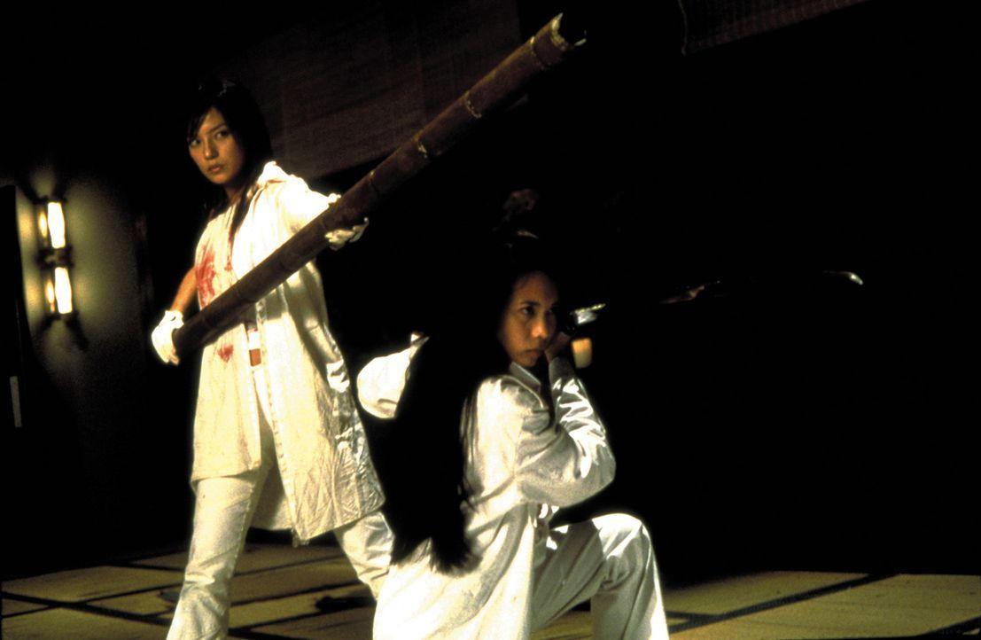 Um eine Chance haben, ihre gefährlichen Gegner zu überleben, müssen sich die Profikillerin Sue (Zhao Wei, l.) und die Undercover-Agentin Hong (Ka... - Bildquelle: Sony Pictures Television International. All Rights Reserved.