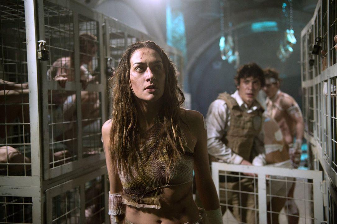 Während Echo (Tasya Teles, l.) und Bellamy (Bob Morley, r.) ihren Angriff von innen planen, sucht Cage Rat bei seinem Vater ... - Bildquelle: 2014 Warner Brothers