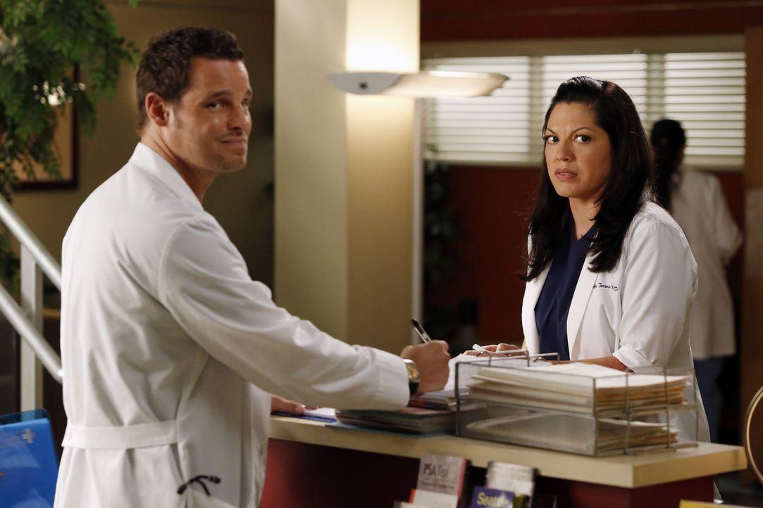 Während Jackson von einer schockierenden Neuigkeit, die April ihm eröffnet, überrascht wird, unterstützen Callie (Sara Ramirez, r.) und Alex (Ju... - Bildquelle: ABC Studios