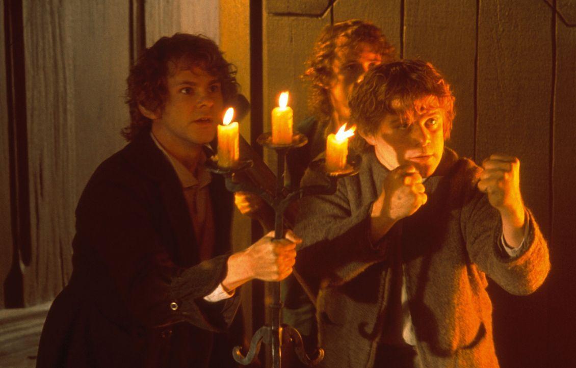Die Gemeinschaft wird getrennt. Sam (Sean Astin, r.) und Frodo (Elijah Wood, l.) müssen ohne die Gefährten ihre gefährliche Reise fortsetzen ... - Bildquelle: Warner Brothers
