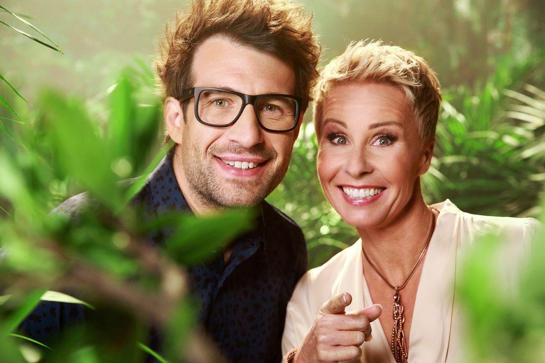 Ich-bin-ein-Star-Holt-mich-hier-raus-Sonja-Zietlow-Daniel-Hartwich-RTL-Stefan-Gregorowius - Bildquelle: RTL / Stefan Gregorowius
