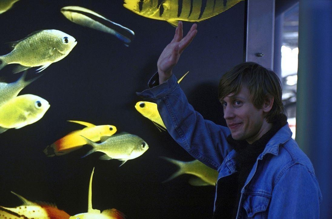 Aus Liebe zu Maja erlernt der wasserscheue Nichtschwimmer Felix (Martin Glade) das Schwimmen. Doch bis zum Erwerb des Seepferdchens ist es ein lange... - Bildquelle: ProSieben