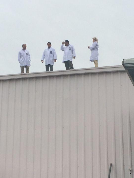 Stuntplayers - Bildquelle: CBS