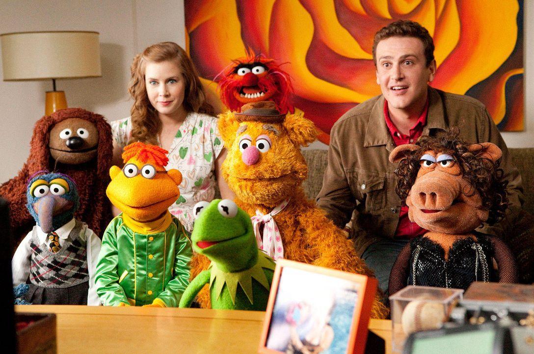 muppets-03-disney-enterprises-incjpg 1900 x 1261 - Bildquelle: Disney Enterprises Inc.
