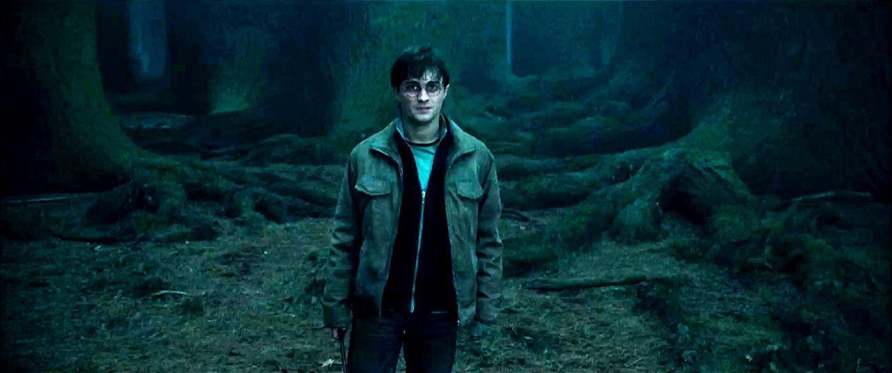 harry-potter-u-d-heiligtuemer-d-todes1-3d-01-warner-bros-entjpg 1400 x 586 - Bildquelle: 2010 Warner Bros. Ent.  Harry Potter Publishing Rights J.K.R.