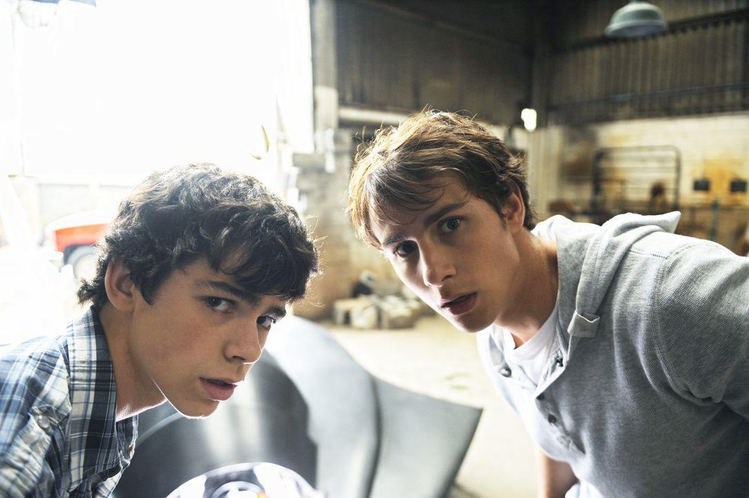 Haben ein Ufo in der heimischen Garage versteckt: die Brüder Tyler (Joey Pollari, l.) und Nick (Kelly Blatz, r.) ... - Bildquelle: Disney