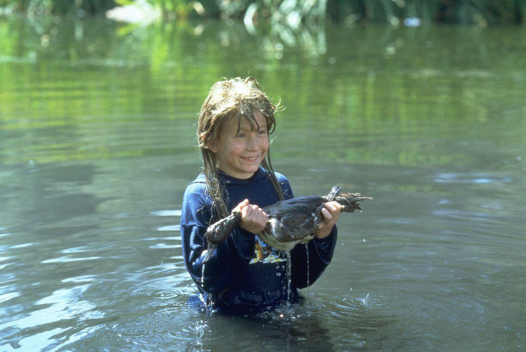 Für seine Eltern ist der Achtjährige Joe (Eric Per Sullivan) ein wirklich überflüssiges Kind. Deshalb nutzen sie einen gemeinsamen Ausflug zum Grand... - Bildquelle: 2003 Sony Pictures Television International. All Rights Reserved.