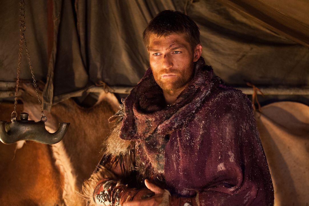 Erneut tappt Spartacus (Liam McIntyre) in eine Falle von Crassus, als er versucht, ihn in seinem eigenen Zelt zu töten. In letzter Minute gelingt es... - Bildquelle: 2012 Starz Entertainment, LLC. All rights reserved.