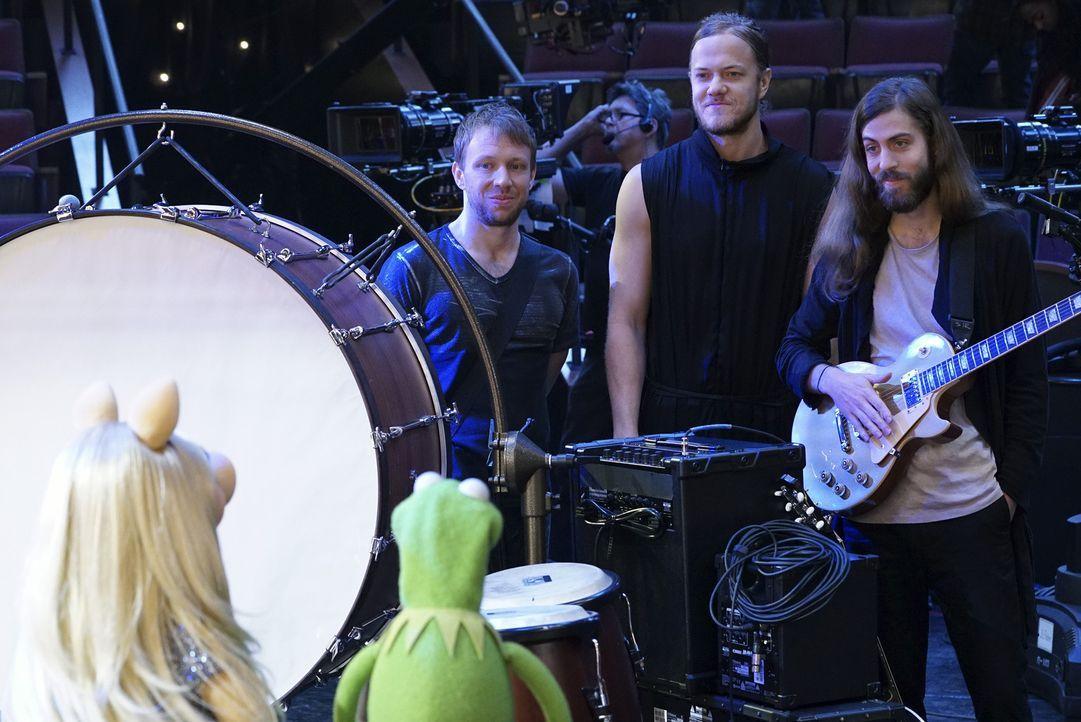 Die mit dem Grammy ausgezeichnete Rockband Imagine Dragons stellen ihre neue Single vor. Kermit (vorne r.) und Miss Piggy (vorne l.) sind begeistert... - Bildquelle: Eric McCandless ABC Studios
