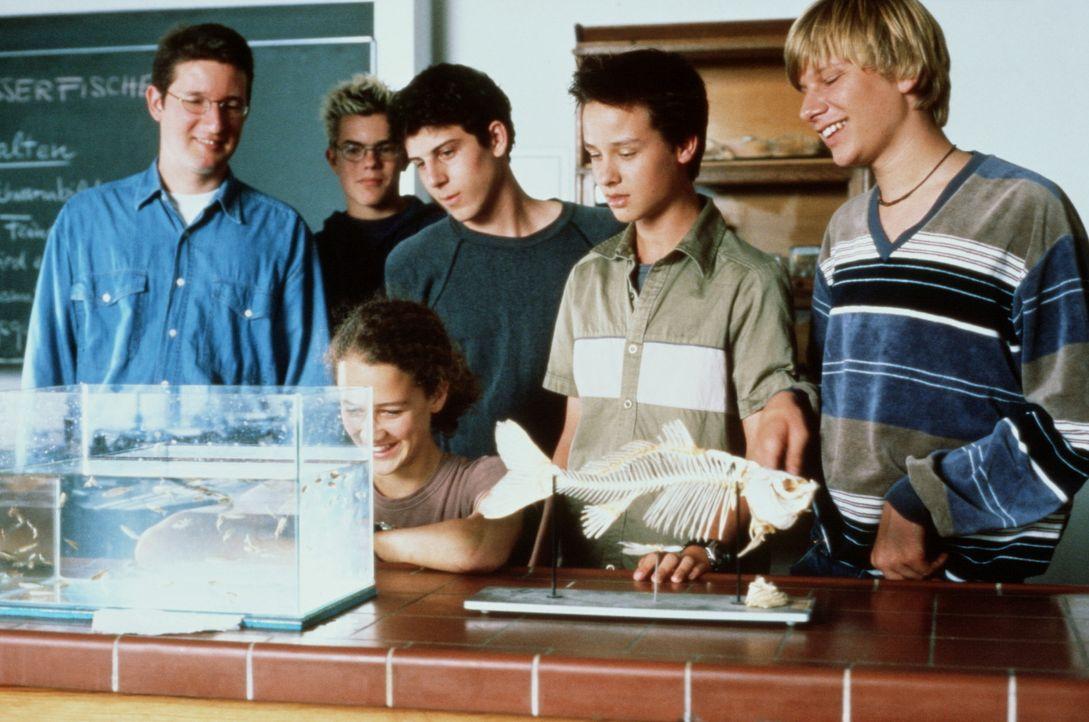 """Mit den Worten """"Ich bin ein Krüppel"""" stellt sich Benjamin (Robert Stadlober, r.) seinen neuen Mitschülern Troy (Can Taylanlar, 3.v.r.), Janosch (T... - Bildquelle: Constantin Film"""