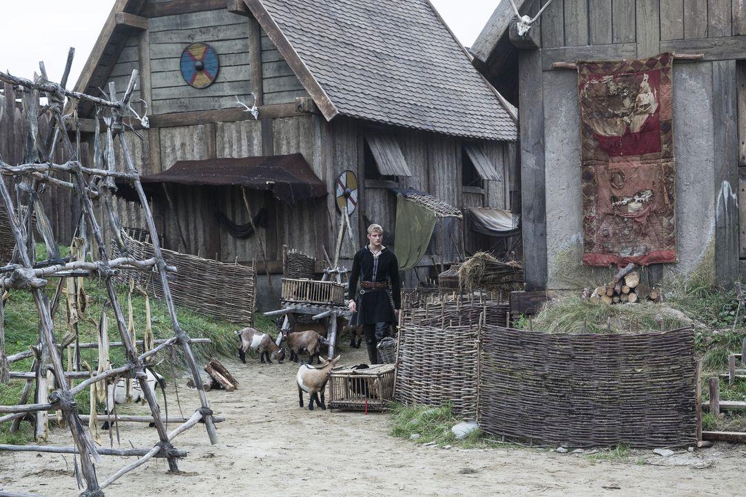 Bjorn (Alexander Ludwig) trifft auf eine junge Frau, die ihm den Kopf verdreht,  während Siggy sich mit König Horik verbündet ... - Bildquelle: 2014 TM TELEVISION PRODUCTIONS LIMITED/T5 VIKINGS PRODUCTIONS INC. ALL RIGHTS RESERVED.