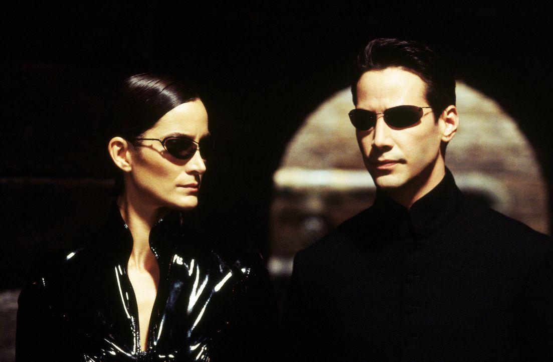 Zusammen mit Morpheus entscheiden sich Neo (Keanu Reeves, r.) und Trinity (Carrie-Anne Moss, l.) in die Matrix zurückzukehren, um die drohende Vern... - Bildquelle: Warner Bros.