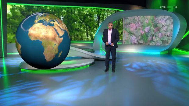 Galileo - Galileo - Mittwoch: Die Galileo Selfmade