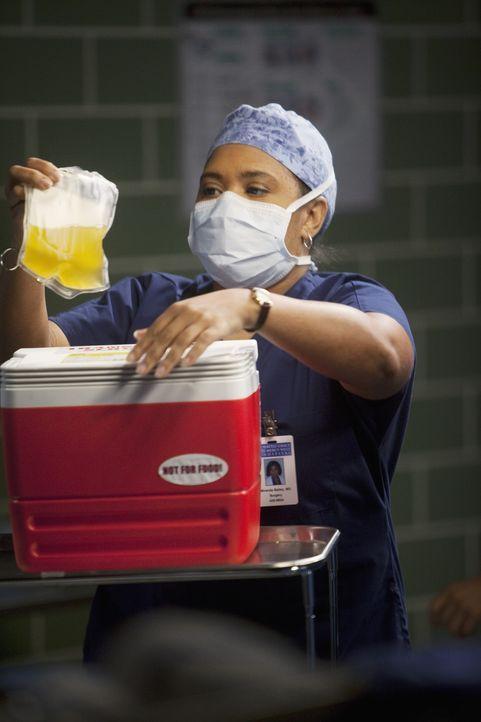Hat eine neue Technologie für sich entdeckt, noch mehr Studenten gleichzeitig zu unterrichten: Bailey (Chandra Wilson) ... - Bildquelle: ABC Studios