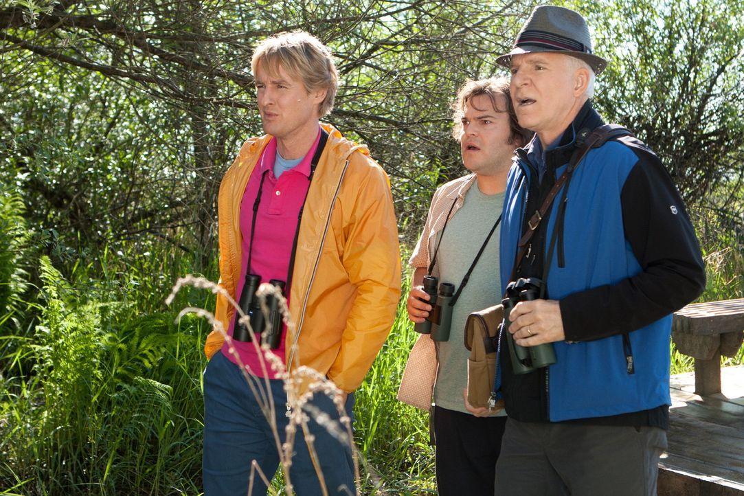 Um einen landesweiten Wettbewerb zu gewinnen, müssen die leidenschaftlichen Ornithologen Kenny (Owen Wilson, .), Brad (Jack Black, M.) und Stu (Stev... - Bildquelle: 2011 Twentieth Century Fox Film Corporation. All rights reserved.