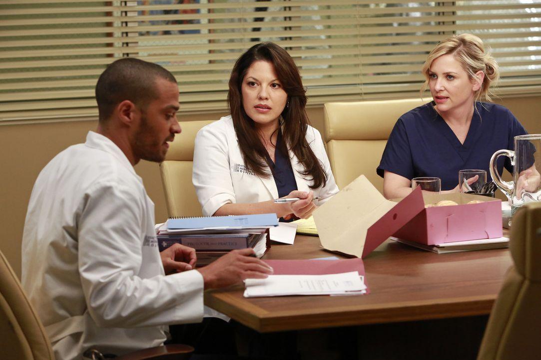 Jackson (Jesse Williams, l.) soll die Chefposition übernehmen. Callie (Sara Ramirez, M.) und Arizona (Jessica Capshaw, r.) reagieren gereizt auf di... - Bildquelle: ABC Studios