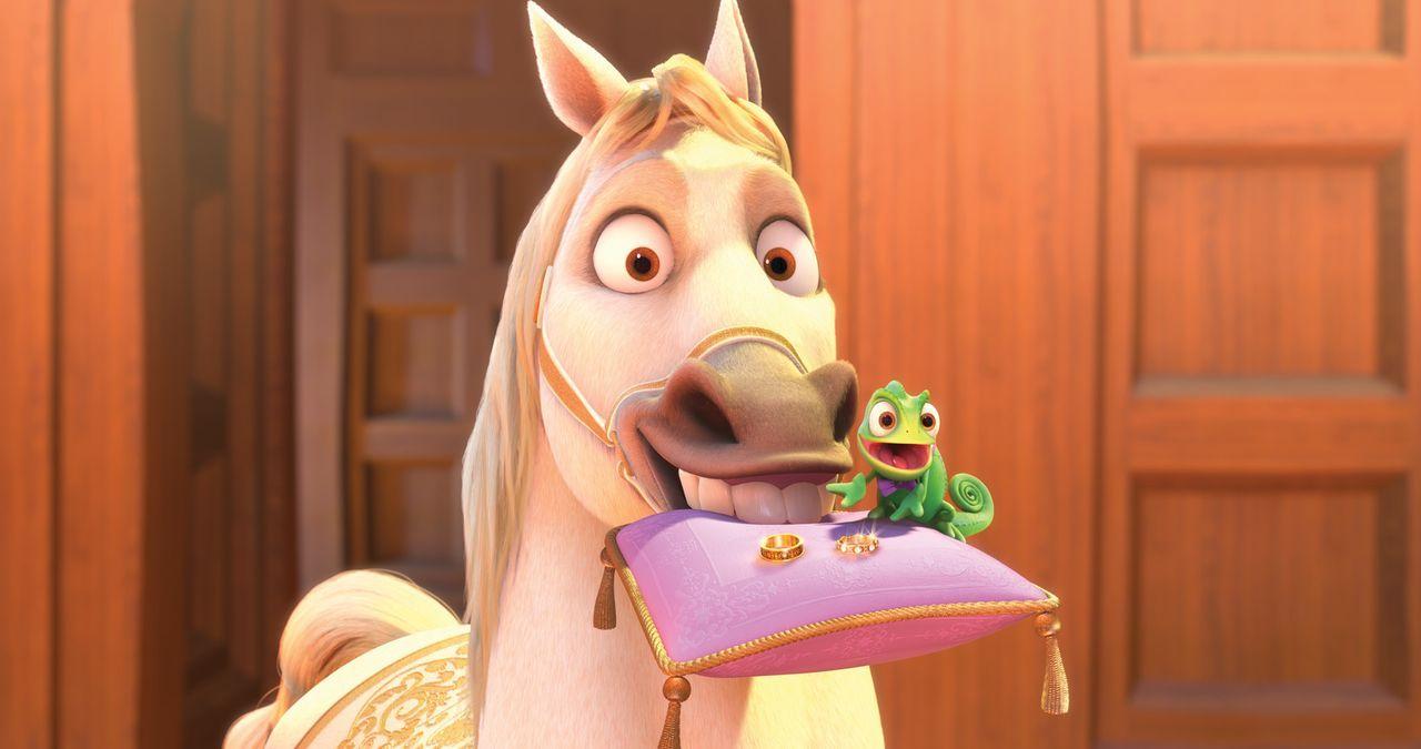 Noch ist alles in Ordnung, doch mit den beiden Streithähnen Maximus und Pascal, ist das Chaos vorprogrammiert - Bildquelle: Disney.  All rights reserved