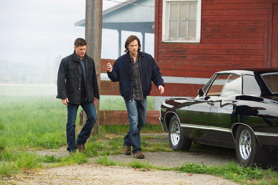 Sam (Jared Padalecki, r.) und Dean (Jensen Ackles, l.) machen sich auf den Weg, um einen alten Pater zu treffen, der früher sonderbare Exorzismen ve... - Bildquelle: Warner Bros. Television