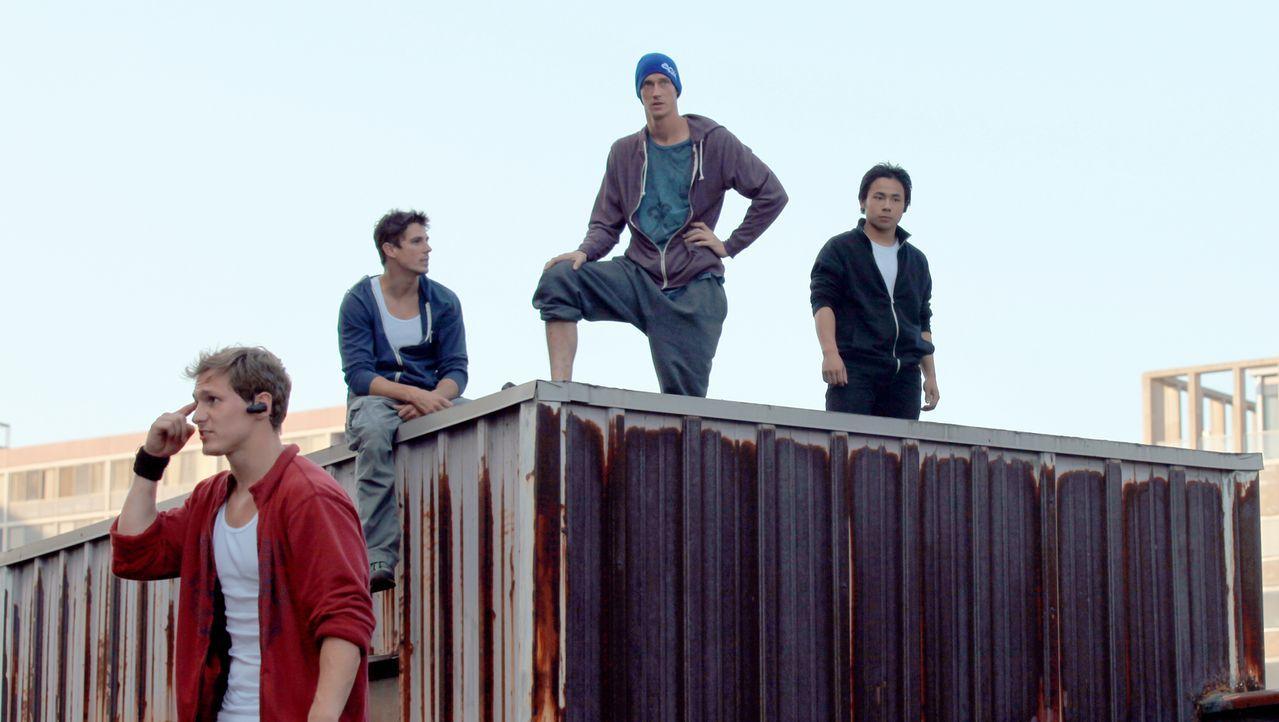 Eines Tages werden die leidenschaftlichen Freerunner (v.l.n.r.) Finch (Ryan Doyle), Ryan (Sean Faris), Decks (John Bernecker) und Kid Elvis (Tony Vo... - Bildquelle: TIBERIUS FILM