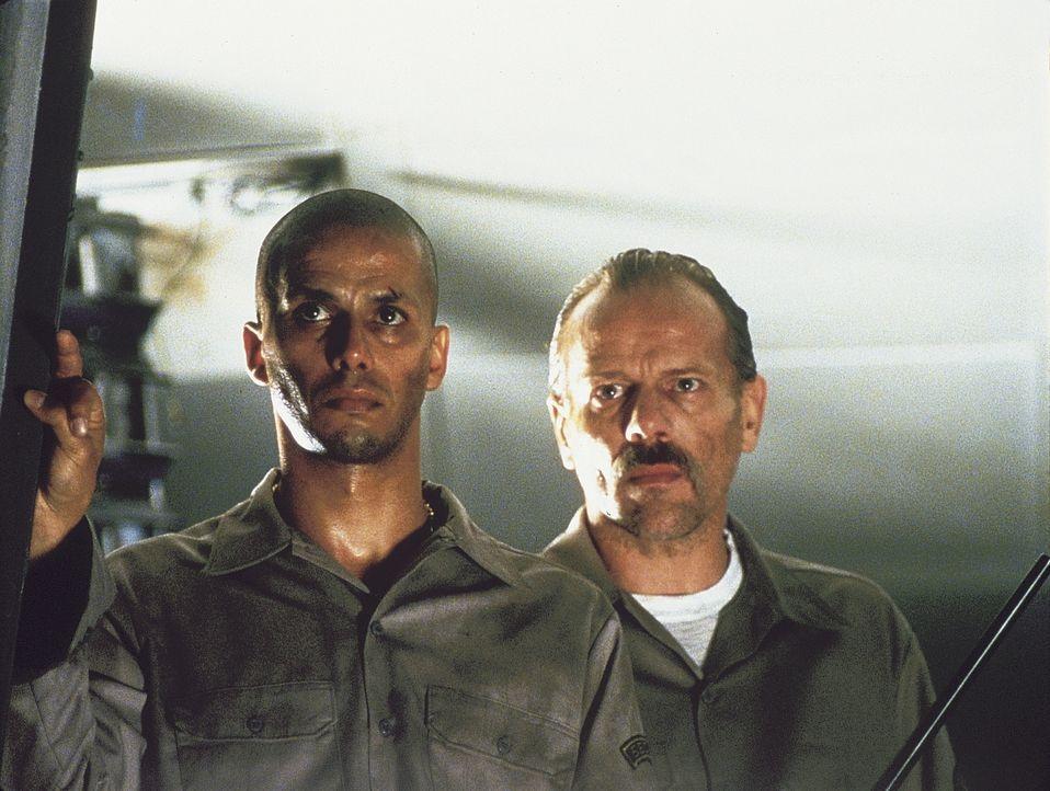 Louis (Pascal Greggory, r.) und Selim (Sami Bouajila, l.) ahnen noch nicht, dass sich allerlei unterschiedlichste Gruppierungen verbotenerweise in d... - Bildquelle: Lions Gate Films Inc.